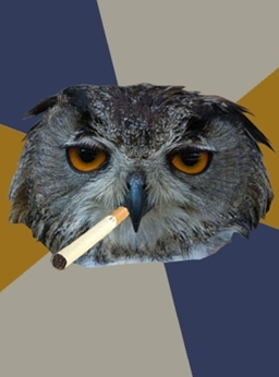 MARTY MCFLY forum's avatar