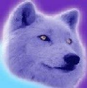 EMEJ forum's avatar