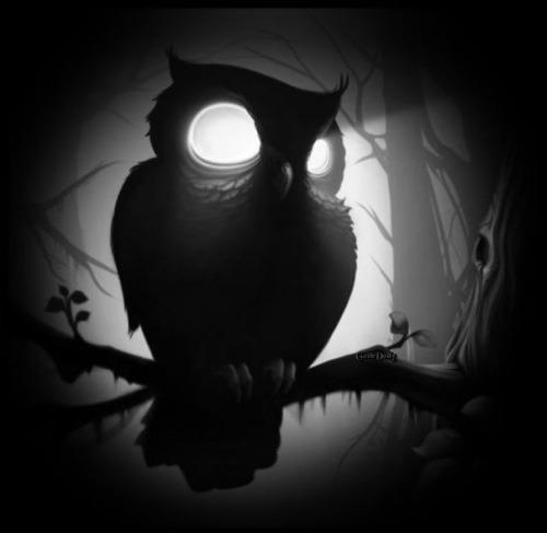 WIREBENDER forum's avatar