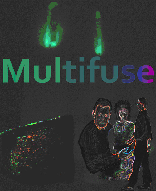 Multifuse picture