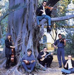 The Penguin Cafe Orchestra picture