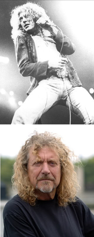 Robert Plant picture