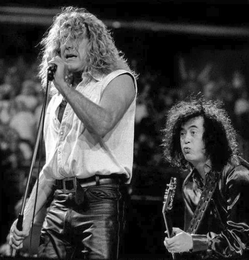Jimmy Page - Robert Plant picture