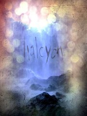 Halcyon picture