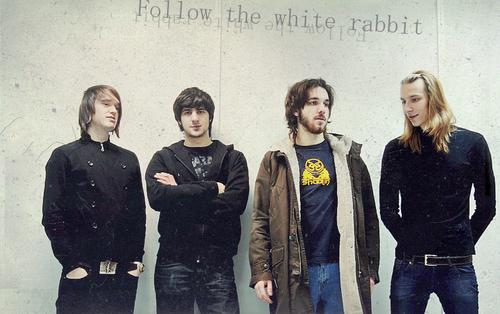 White rabbits band