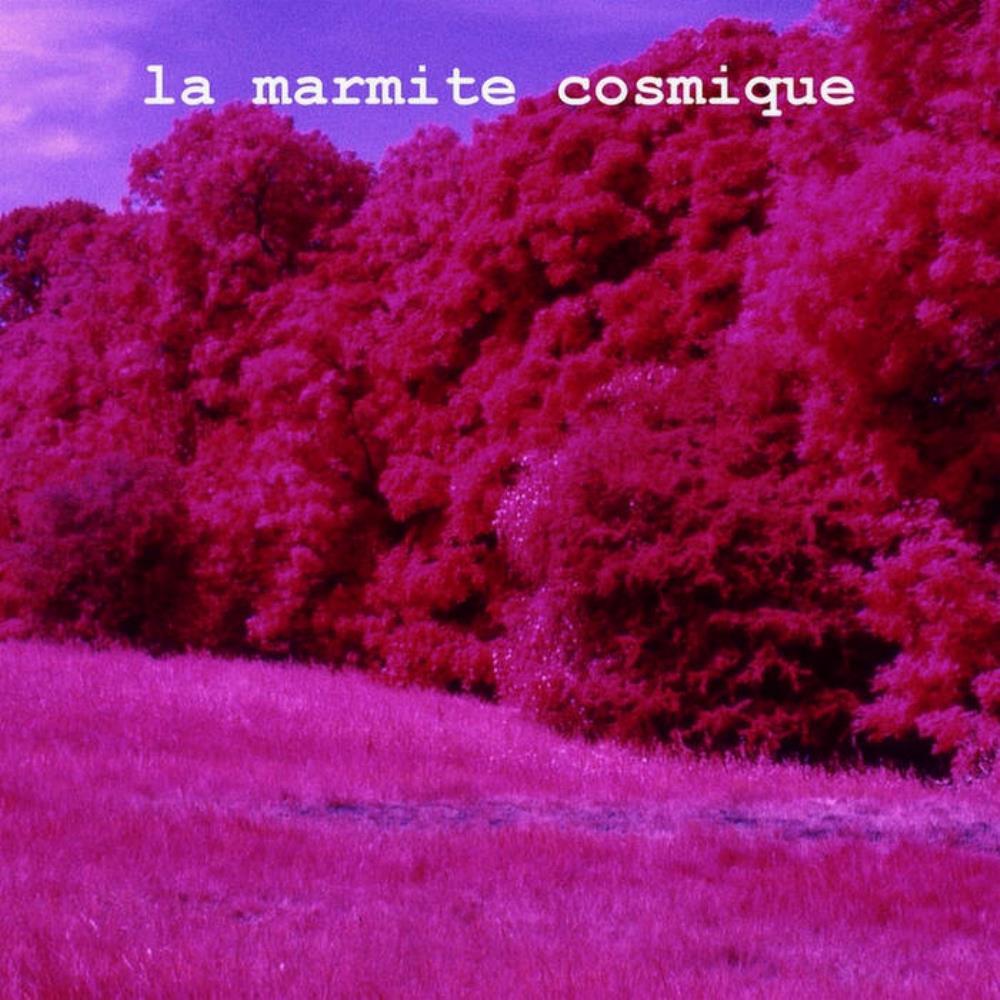 La Marmite Cosmique Volume 2 by BUKWALD, ARNAUD  album cover