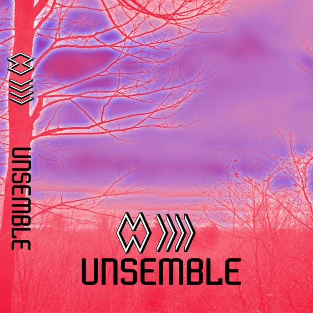 The Band Whose Name Is A Symbol Unsemble album cover