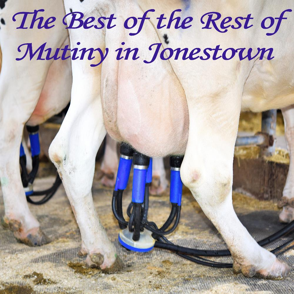 The Best of the Rest of Mutiny in Jonestown by MUTINY IN JONESTOWN album cover