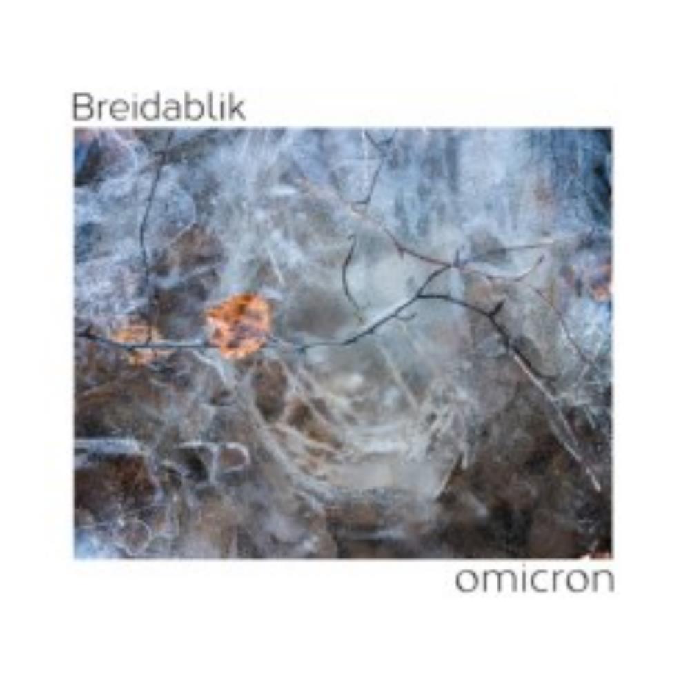Omicron by BREIDABLIK album cover