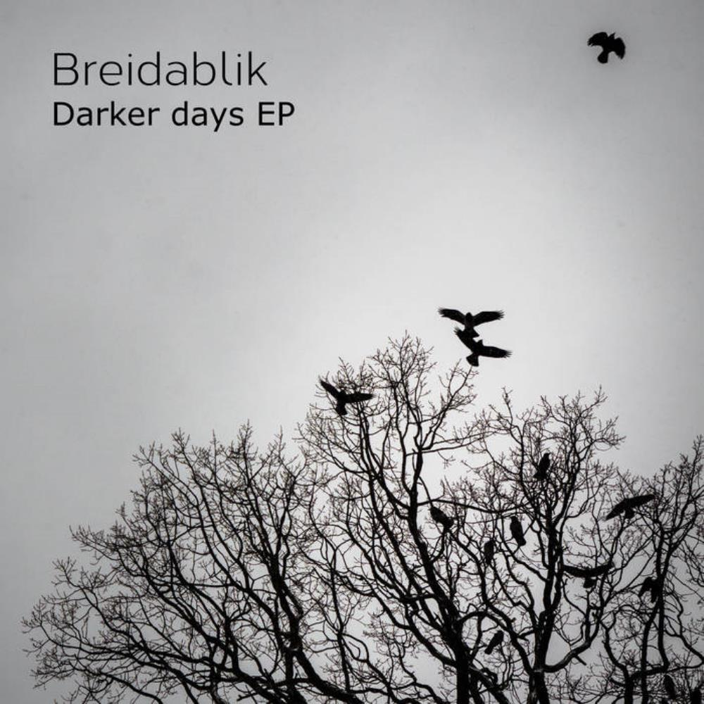 Darker Days by Breidablik album rcover