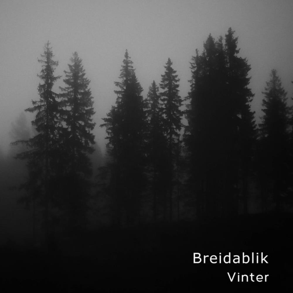 Vinter by BREIDABLIK album cover