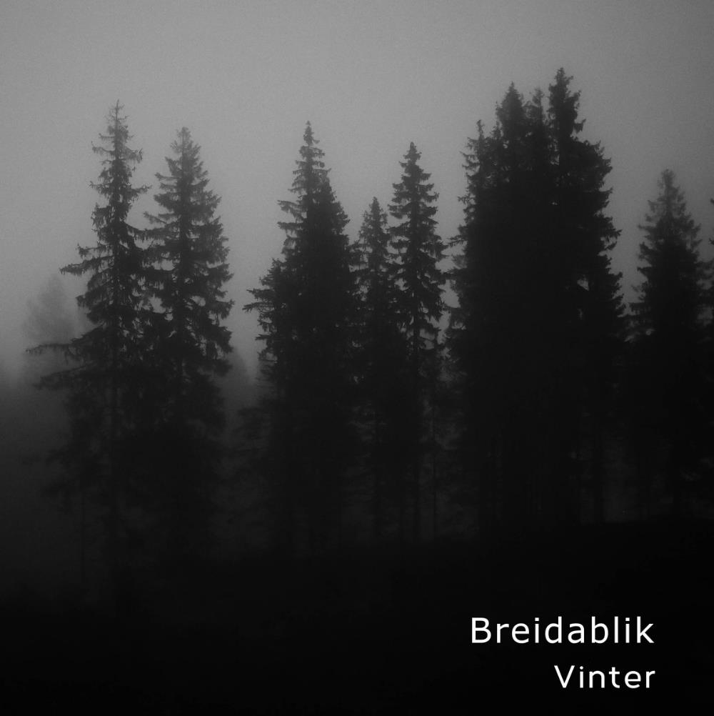 Vinter by BREIDABLIK album cover