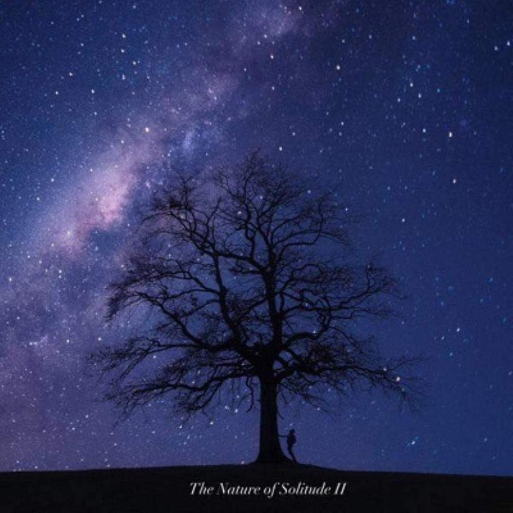 The Nature of Solitude II by YARD, RYAN album cover