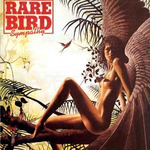 Sympathy by RARE BIRD album cover