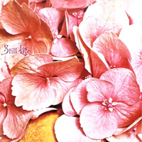 Still Life - Still Life CD (album) cover