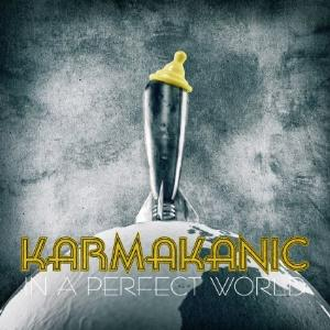 In A Perfect World by KARMAKANIC album cover