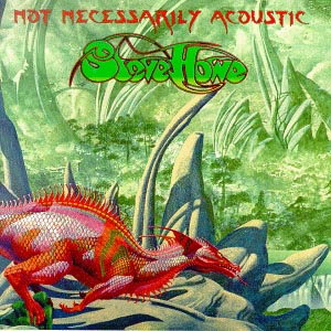 Steve Howe Not Necessarily Acoustic album cover