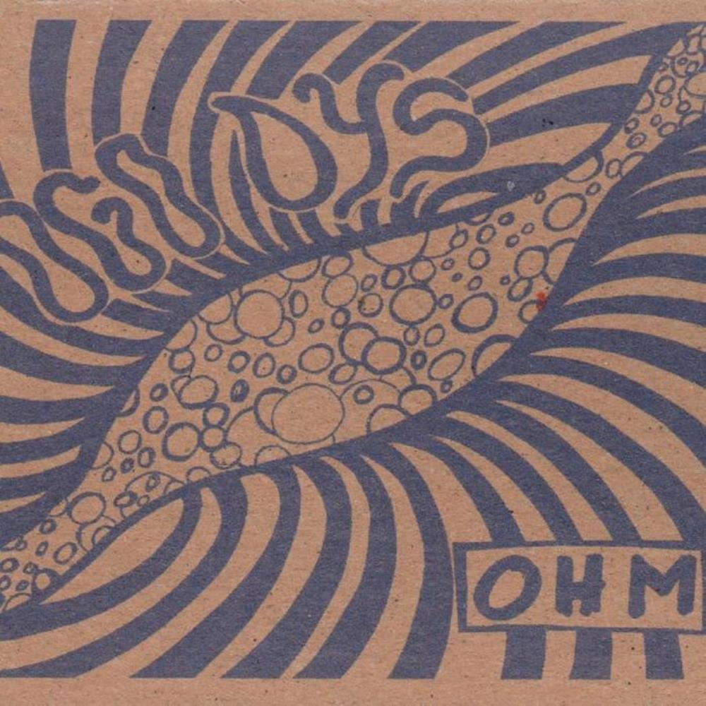 Ohm by OGO DYS album cover