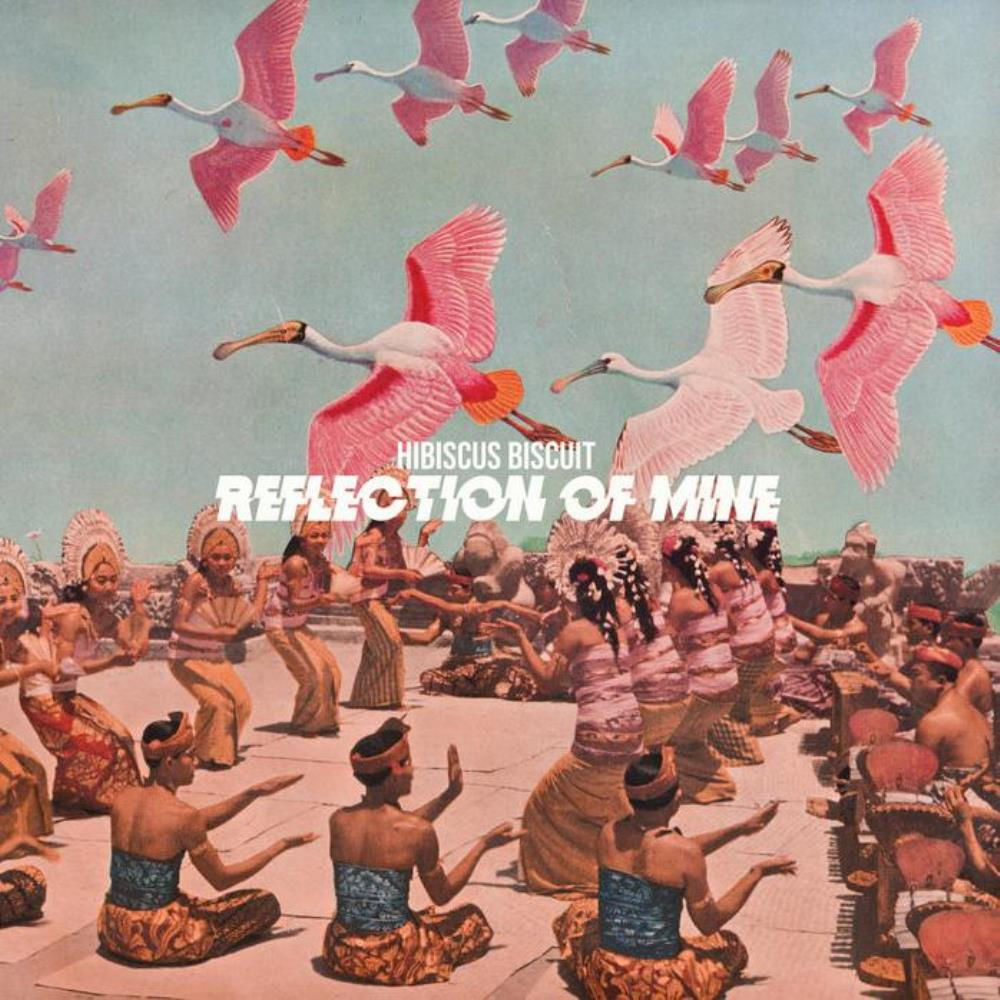 Reflection of Mine by HIBISCUS BISCUIT album cover