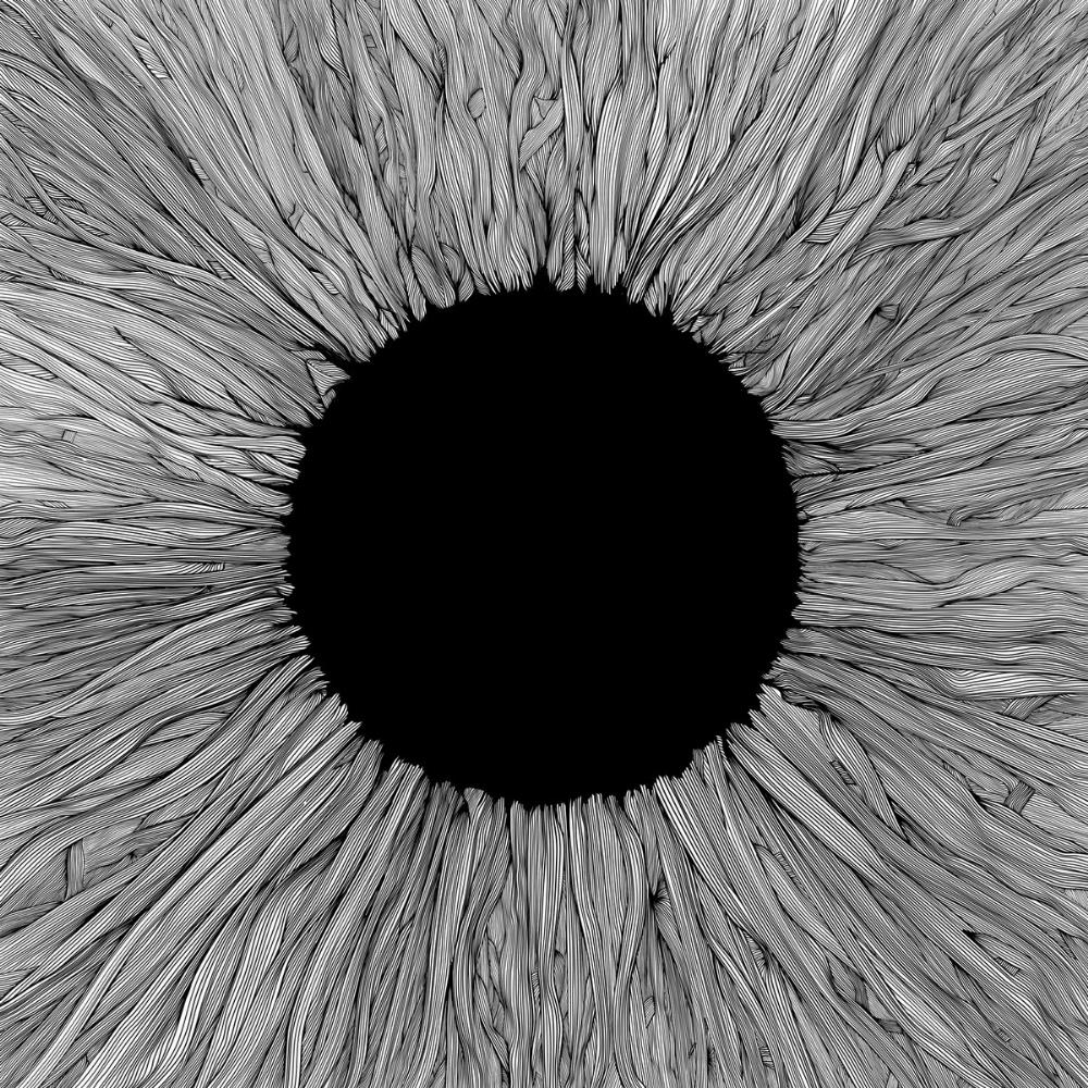 Witness by VOLA album cover
