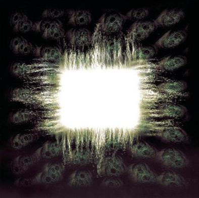 Tool - Ænima CD (album) cover