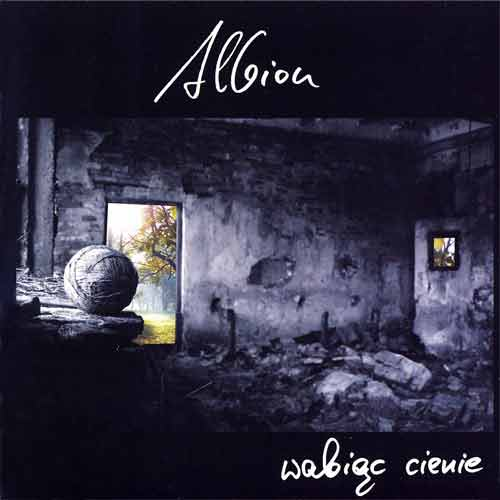 Wabiąc Cienie by ALBION album cover