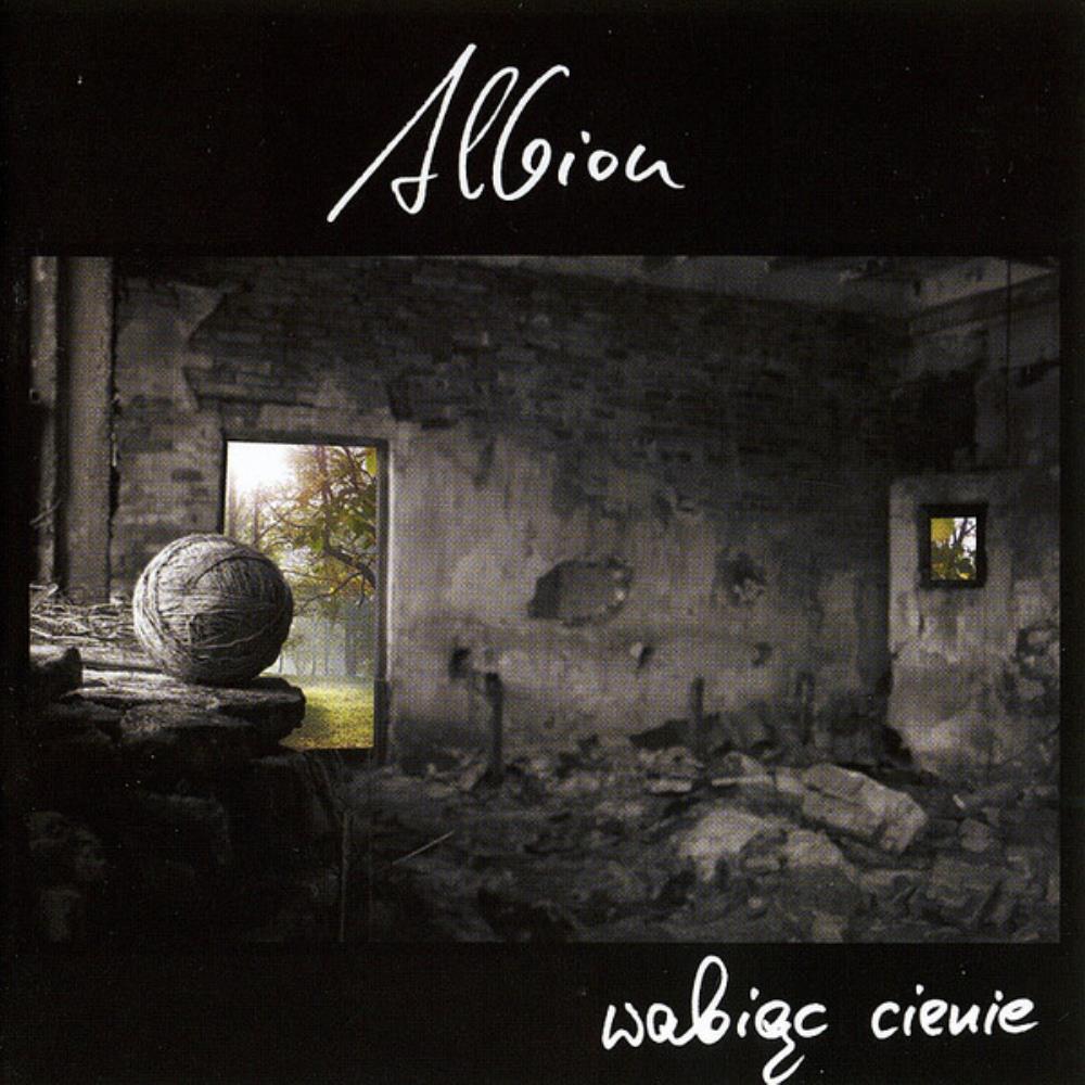 Wabiąc Cienie by ALBION album cover