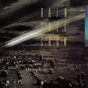 Rain Tree Crow by RAIN TREE CROW album cover