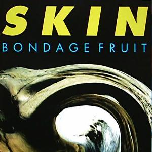 Bondage Fruit V - Skin by BONDAGE FRUIT album cover