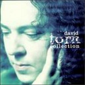 David Torn Collection album cover