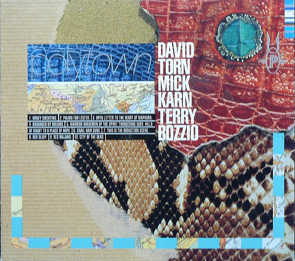 David Torn - Polytown (with Mick Karn and Terry Bozzio) CD (album) cover