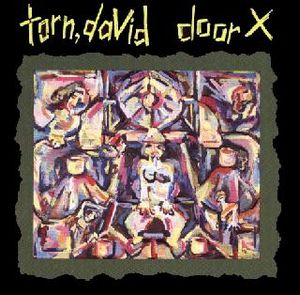 Door X by TORN,DAVID album cover
