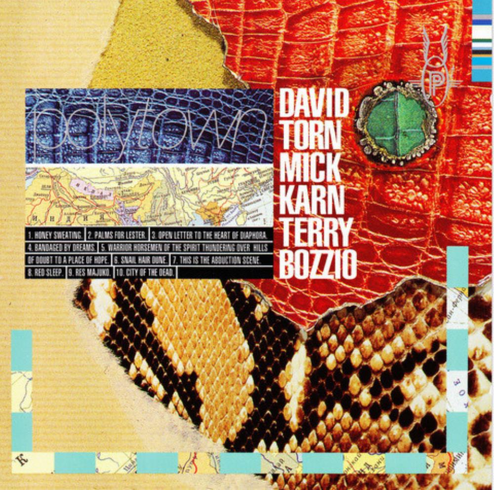 David Torn, Mick Karn & Terry Bozzio: Polytown by TORN,DAVID album cover