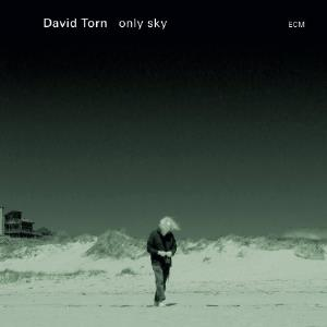 only sky by TORN,DAVID album cover