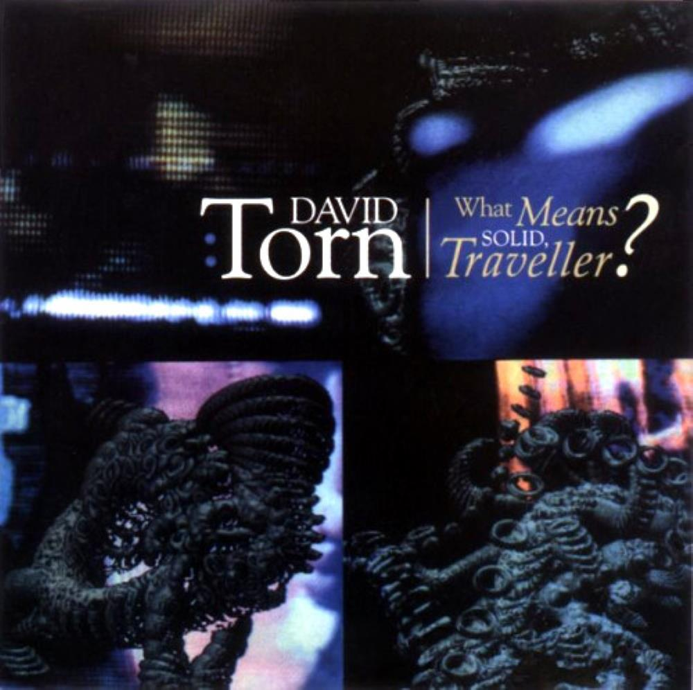 What Means Solid, Traveller? by TORN,DAVID album cover