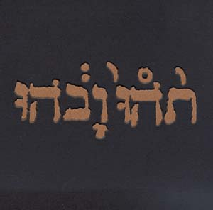Godspeed You! Black Emperor Slow Riot For New Zero Kanada (EP) album cover