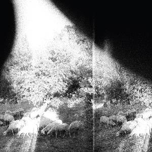 Asunder, Sweet And Other Distress by GODSPEED YOU! BLACK EMPEROR album cover