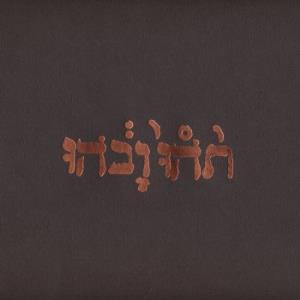Godspeed You! Black Emperor Slow Riot For New Zero Kanada E.P. album cover