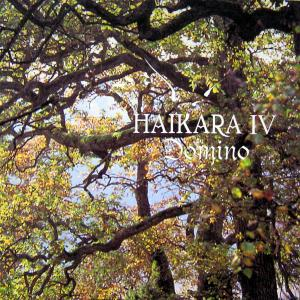 Haikara Haikara IV: Domino album cover