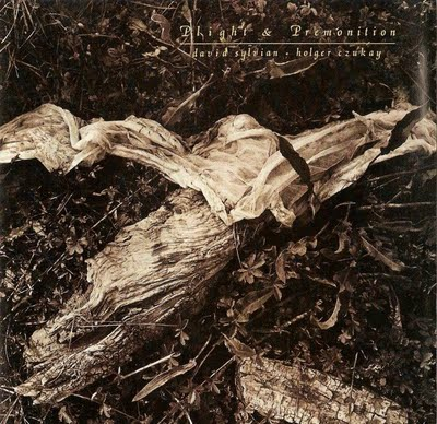 David Sylvian - Plight & Premonition (with Holger Czukay) CD (album) cover