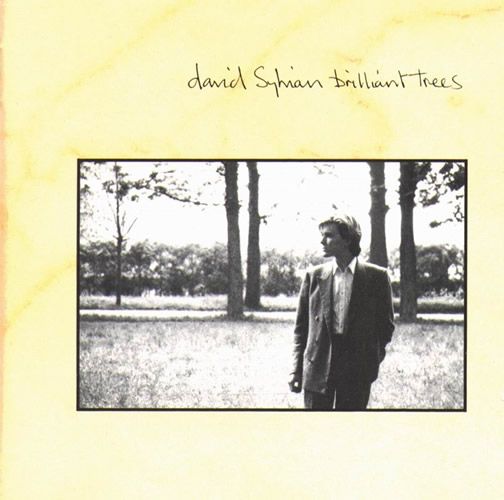 David Sylvian - Brilliant Trees  CD (album) cover