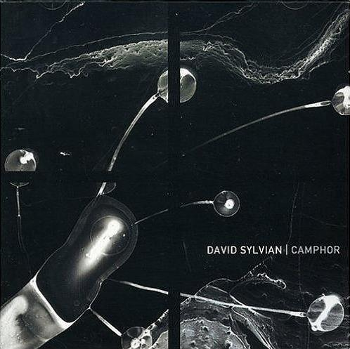 David Sylvian - Camphor CD (album) cover