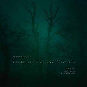 There's A Light That Enters Houses With No Other House In Sight by SYLVIAN, DAVID album cover
