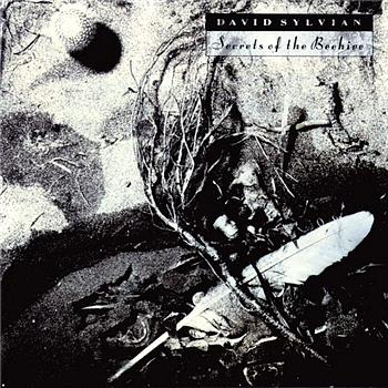David Sylvian Secrets Of The Beehive  album cover