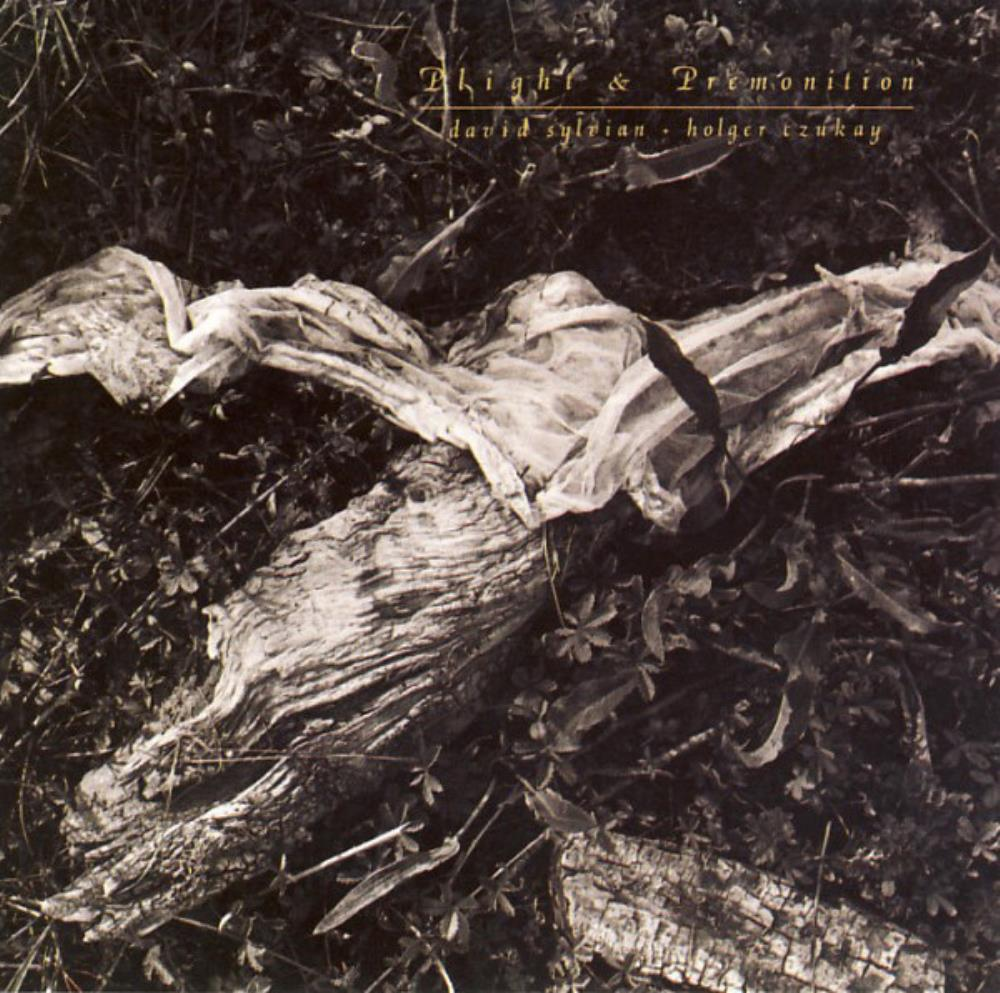 David Sylvian - David Sylvian & Holger Czukay: Plight & Premonition CD (album) cover
