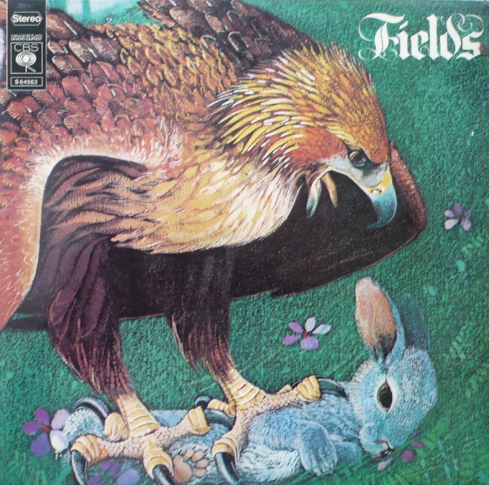 Fields by FIELDS album cover