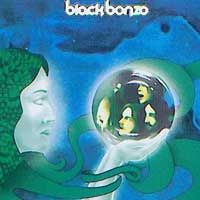 Black Bonzo Lady Of The Light album cover