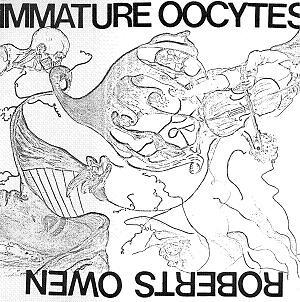 Maelstrom Immature Oocytes (Roberts Owen - Robert Williams of Maelstrom) + Maelstrom album cover