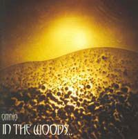 In The Woods... Omnio album cover
