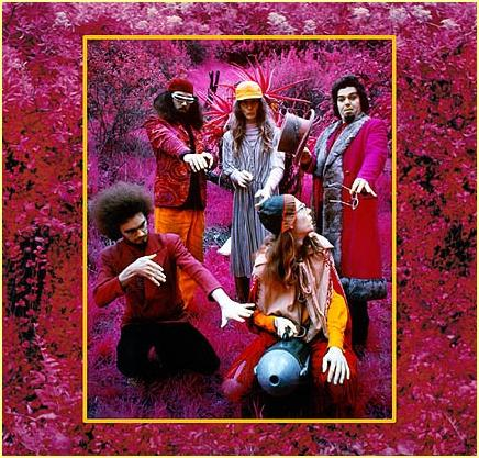 Captain Beefheart Grow Fins (Rarities 1965 - 1982) album cover